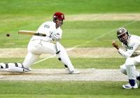 Cricket-teams